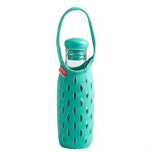 Veggie Meals - Built NY 500ml Glass Water Bottle with Neoprene Tote - Mint