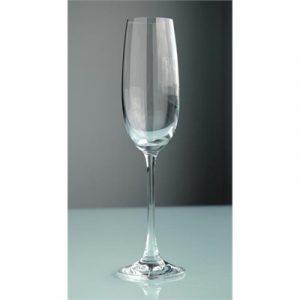 Veggie Meals - S&P Salut Set Of 6 180ml Champagne Flutes