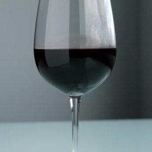 Veggie Meals - S&P Salut Set Of 6 540ml Red Wine Glasses